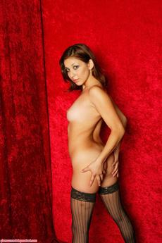 Net Stockings
