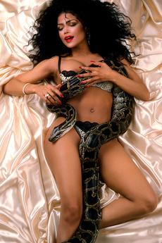 Playboy Plus Is On Set With La Toya Jackson To Sho