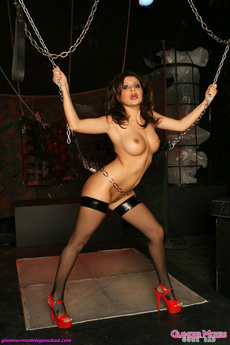 Fishnets And Chains picture 6
